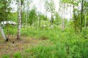 Садово-дачный участок 12 соток в СНТ Пульсар Волоколамский район МО - Фото 5