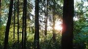 Участок 6 соток в СНТ Комягино ,25 км от МКАД Ярославского напрго напр - Фото 2