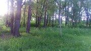 Продаётся земля в черте г. Солнечногорска - Фото 4