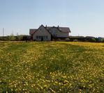 Дом в д. Юренево - Фото 1
