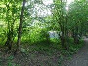 Дом в Абрамцево на лесном участке 24 сотки - Фото 4