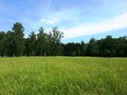 Продам участок 6,93 соток в уютном дачном поселке - Фото 4