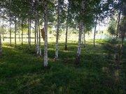 Продается кфх 1,5 га В Д.святье кимрского района - Фото 3
