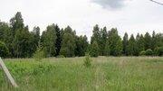 Участок 2.2га, Серпуховской район, д. Верхнее Шахлово - Фото 4