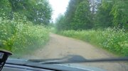 Новгородская область, Любытинский район, д.Домовичи, 10 сот. ЛПХ - Фото 4