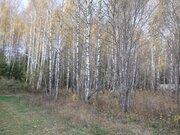 Земельный участок 12 соток 45 км.от МКАД - Фото 2
