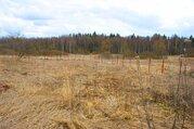 Участок 15 соток в деревне Вашурино Волоколамского района. Лес. Водоем