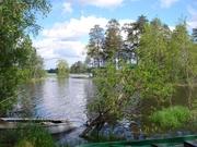 Продаю участок, ш. Горьковское, 60 км, Васютино д. - Фото 1