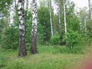 Участок 20 соток у леса 48 км МКАД м4 Дон, Новорязанское ш