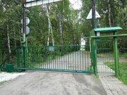 Участок в СНТ Василек 5,5 соток в черте г. Климовска. - Фото 2