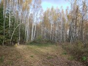 Земельный участок 12 соток 45 км.от МКАД - Фото 4