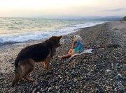 Участок на берегу моря в Абхазии - Фото 5