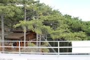 Видовой дом в Сосновом бору - Фото 5