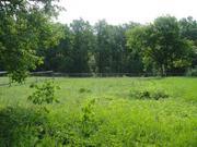 Шикарный прилесной участок 50 соток в тихой жилой деревне. ПМЖ. - Фото 1