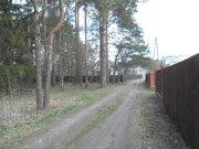 10 сот. в д. Протасово, 35 км. от МКАД - Фото 2