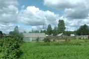 Деревенский дом с хозяйством в лесной деревне с большим участком - Фото 2