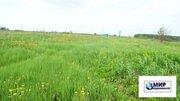 Продажа земельного участка 31сот. в д. Калистово Волоколамского района - Фото 2