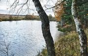 Участок 4,7 сотки у леса, на берегу реки. г. Климовск, СНТ Дубрава - Фото 5