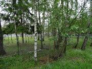 Осташковское 20 км от МКАД, вблизи д. Витенево. Участок 25 соток - Фото 1