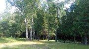 1 Га под ИЖС в деревне Новошихово, - Фото 5