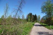 Участок в стародачном месте Фирсановка - Фото 4
