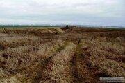 Карьер (кварц.песок), земля 300 Га, Нижегородская область - Фото 4