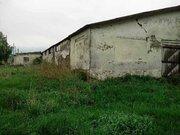 Продам нежилое помещение в Новых Бурасах Саратовской области - Фото 3