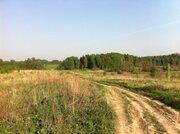Земельный участок 25 соток в д. Становище - Фото 4