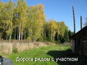 Участок 9 соток в Коломенском районе, ЛПХ рядом с лесным массивом - Фото 3