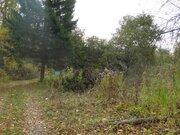 Продажа: земельный участок 25 соток - Фото 2