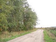 6 соток, с.Заворово, 45 км от МКАД - Фото 4