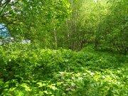 Продам земельный участок Решоткино Клинский район - Фото 2