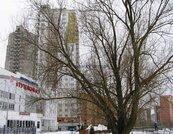 Продается трехкомнатная квартира в новостройке - Фото 3