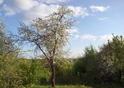 Участок 12 сот. г. Домодедово СНТ Заря - Фото 2