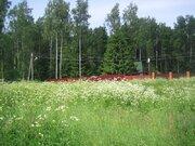 Участок, Московская область, ш. Горьковское, 60 км, дер.Васютино - Фото 4