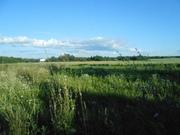 Продаю участок на берегу Рузского водохранилища д. Палашкино - Фото 2