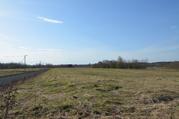 Участок 59 соток, вблизи с. Борисово, Можайский р-н, 90 км от МКАД - Фото 5