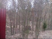 Продается земельный участок 12 соток, д.жёдочи - Фото 5
