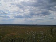 Земельный участок 16 сельхозназначения в Ивановской области - Фото 5