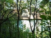 Старый дом на Загорянке лесной участок 30 сот. - Фото 1