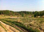 Земельный участок 25 соток в д. Становище - Фото 2