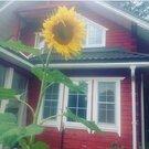 Сдается дом посуточно с террасой расположен в городе Щелково, Дома и коттеджи на сутки в Щелково, ID объекта - 502562274 - Фото 24