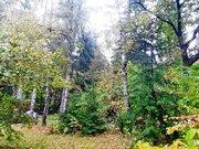 Участок в Жаворонках, дск Возрождение, 17.4сот, ИЖС - Фото 1