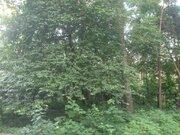 Продается уникальный лесной участок 12 сот. правильной формы в Кратово - Фото 5
