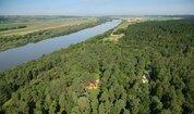 Лесной земельный участок на высоком берегу реки Ока деревня Лужки - Фото 2