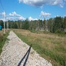 Лесной земельный участок - Фото 2