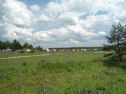 3,5 Га для сельхозпроизводства - 90 км Щёлковское шоссе - д.Лисицыно - Фото 1