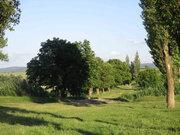 Земельный участок ИЖС  20 сот. Белогорский р-н, . - Фото 4