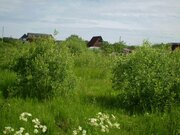 Конаково, лес, вода - недорогая земля в СНТ Малиновка