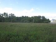 Земельный участок на берегу реки Ока в деревне Лужки - Фото 4